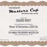 MasterCup2011