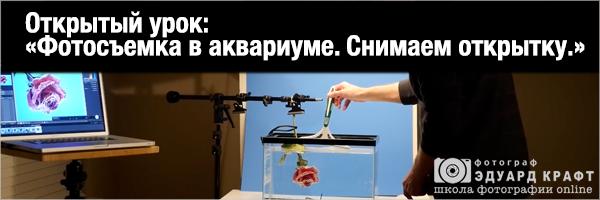 Открытый урок - фотосъемка в аквариуме